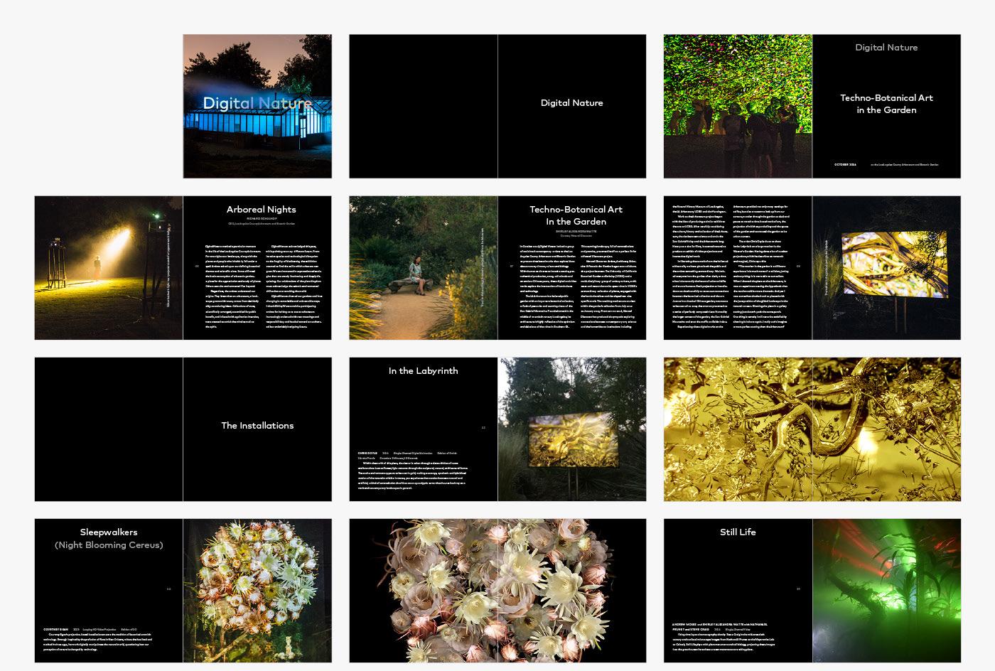 http://carlbeanlarson.com/files/gimgs/46_cbl-digital-nature-spreads-01_v2.jpg